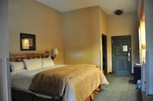 King Bed Room at the Great Wolf Lodge