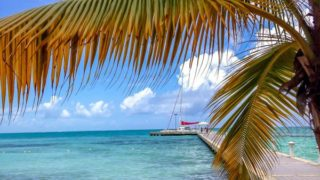 Grand Cayman Cruise Excursions To Book