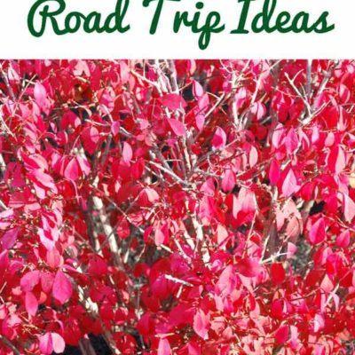 4 New England Fall Road Trip Ideas