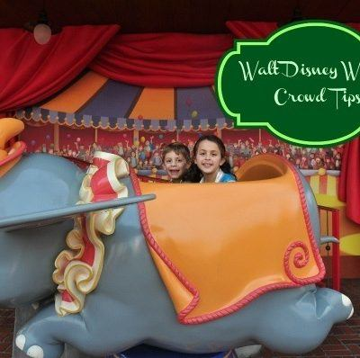 Walt Disney World Crowd Tips For School Vacations