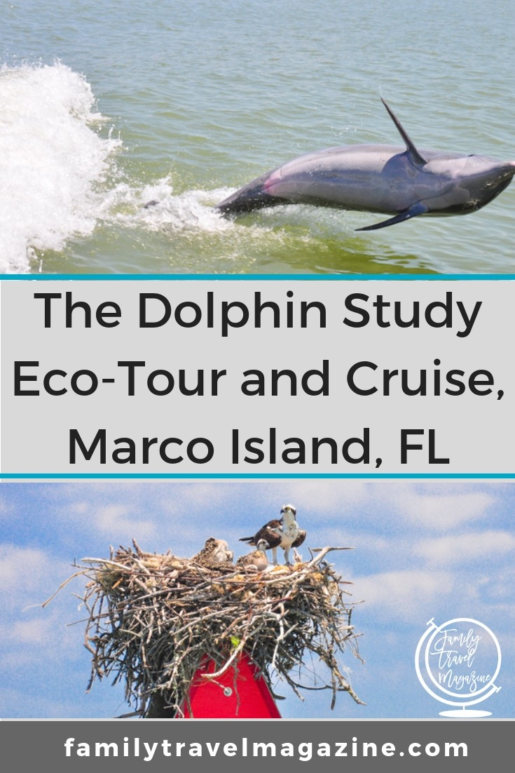 A review of the Dolphin Study Eco-Tour and Cruise in Marco Island, the only Florida activity listed in the book 100 Places That Can Change Your Child's Life
