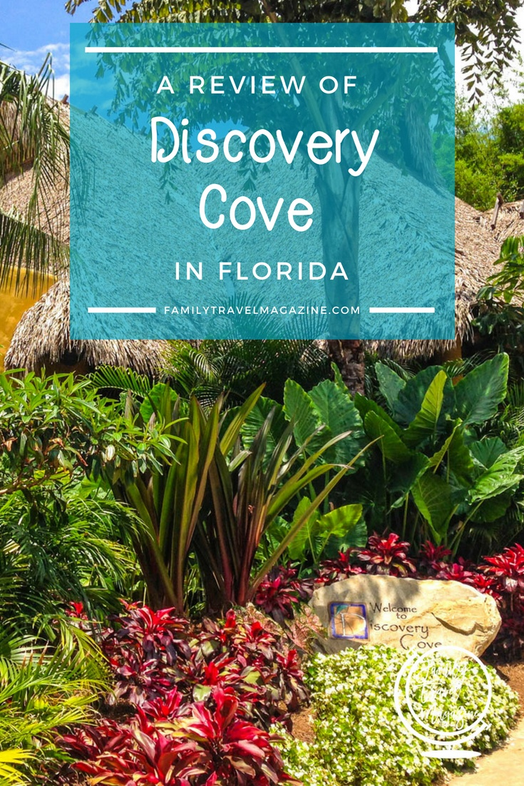 Our Discovery Cove Review – A Great Place To Swim With Dolphins In Florida, Snorkel In A Reef, See Tropical Birds, And Be Immersed In Nature.