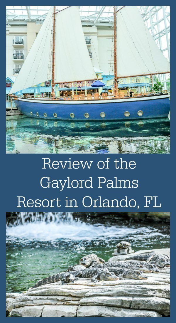 Review of the Gaylord Palms Resort, located in the greater Orlando Florida area. It features a beautiful outdoor pool area, as well as other fun family amenities.