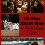 must-dos Walt Disney World