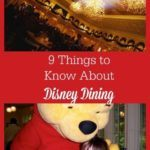 thingstoknowaboutdisneydining