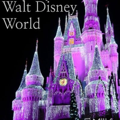 Dozens of Essential Disney World Tips