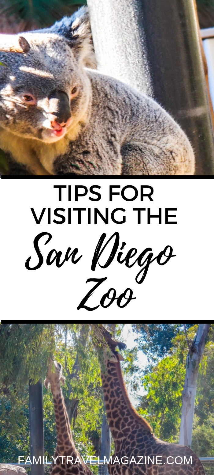 Tips for Visiting the San Diego Zoo With Your Family