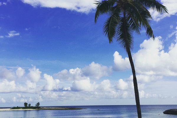 Instagram Images from Our Nassau/Paradise Island Trip