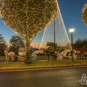 The Gaylord Opryland Hotel Christmas Events - a Country Christmas, including ICE!, carriage rides, Breakfast with the Grinch, and more.