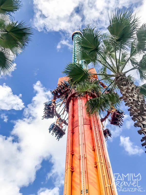 Thrill rides at Busch Gardens Tampa Bay