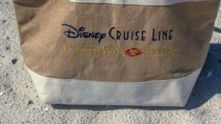 Disney Cruise Line's Castaway Club
