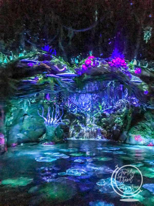 navi river at Disney's Animal Kingdom