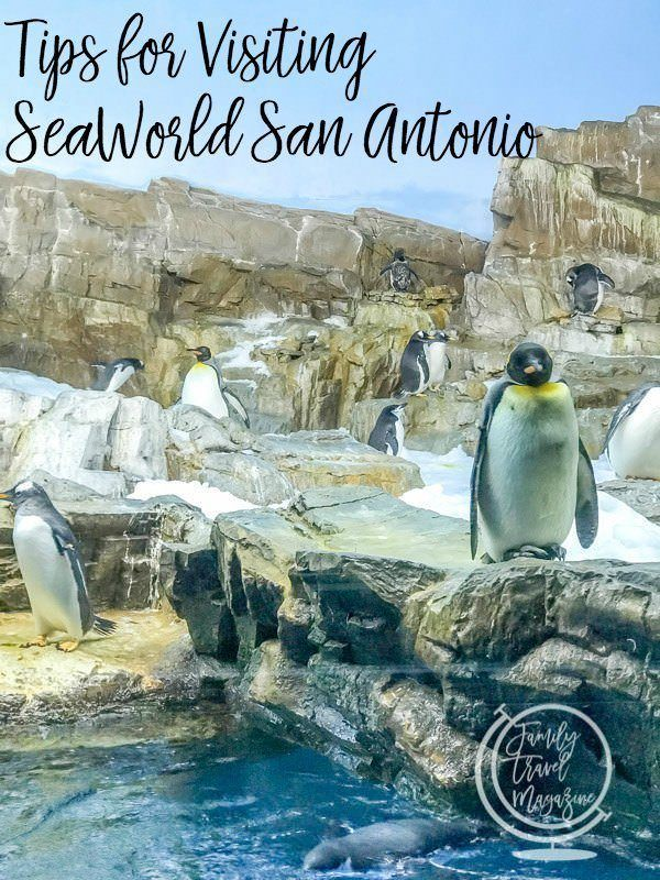 Tips for visiting SeaWorld San Antonio including things to do, rides to ride, food to eat, and more.