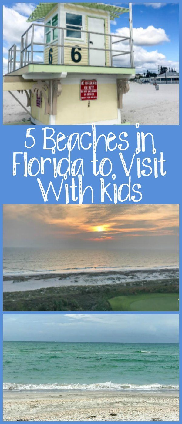 5 Best Beaches in Florida With Kids, including Clearwater and Marco Island.