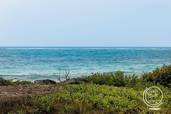 The Caribbean sea from Tulum