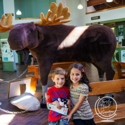 Things to Do in Lincoln, NH with Kids