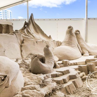 All About The Clearwater Beach Sugar Sand Festival