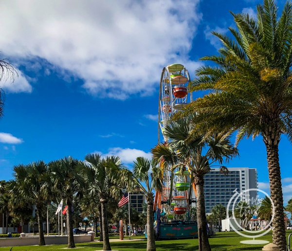 The ferris wheel at the sugar sand festival