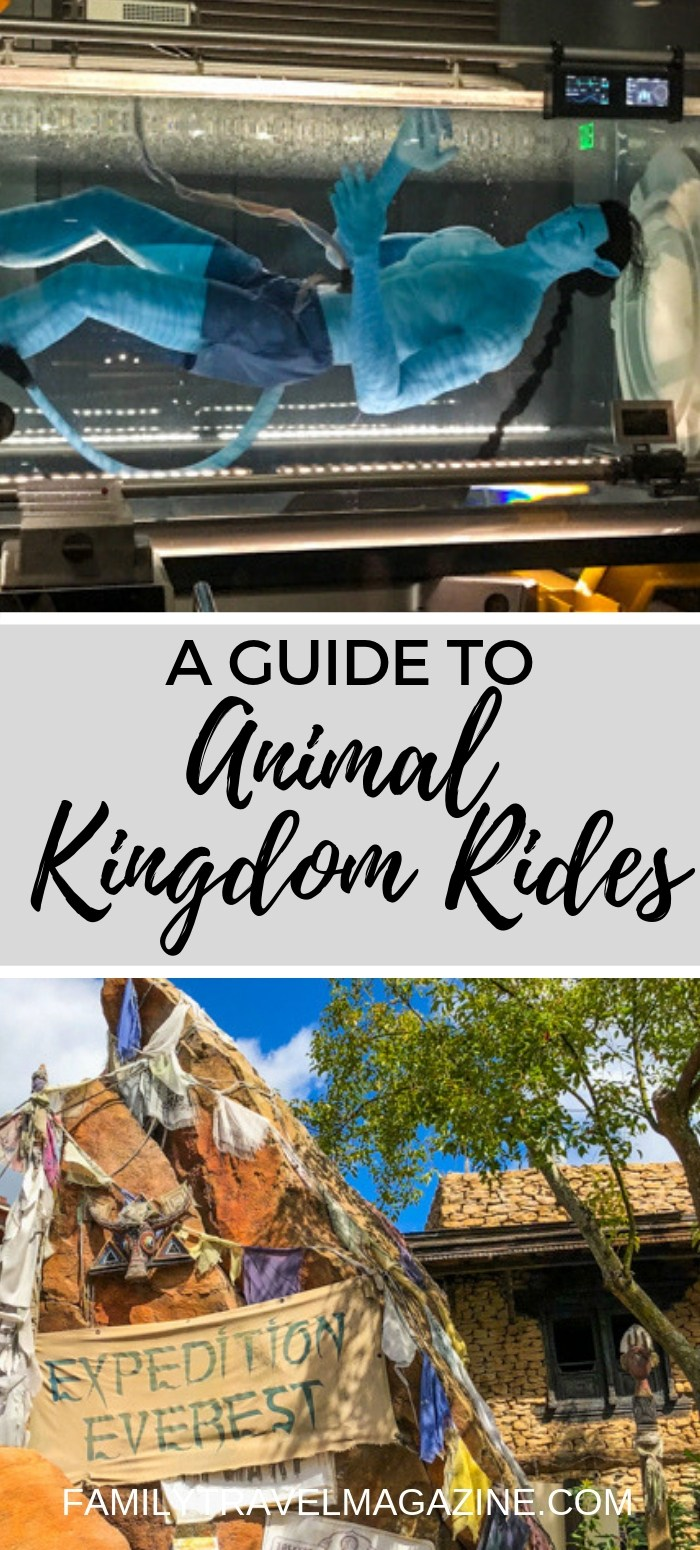 A guide to Animal Kingdom Rides, including the Avatar Flight of Passage, Kilimanjaro Safari, and more.