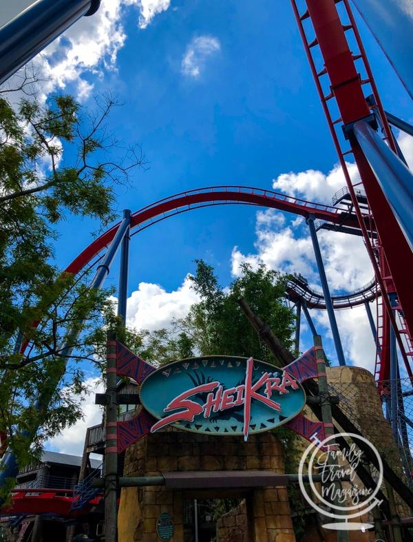 SheiKra Busch Gardens