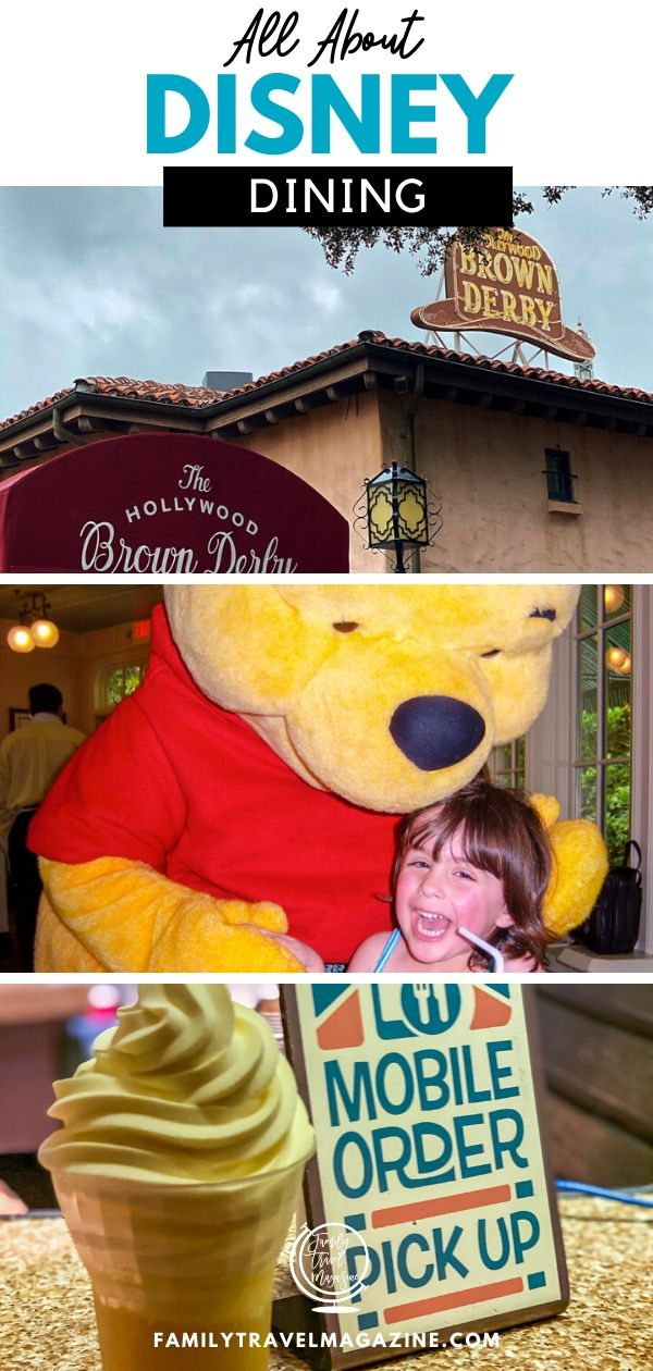 Disney Dining can be complex - there are various types of restaurants to understand, advance dining reservations to be made, and the Disney Dining Plan to purchase. Read all about Disney Dining so that you are prepared for your next family vacation to Walt Disney World.