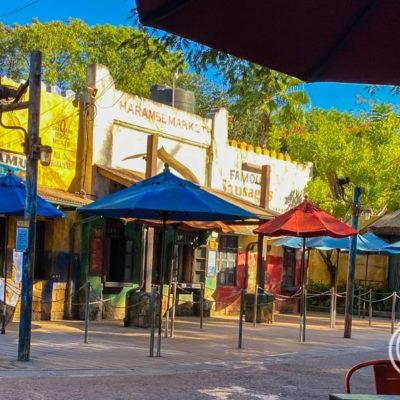 The Best Animal Kingdom Restaurants