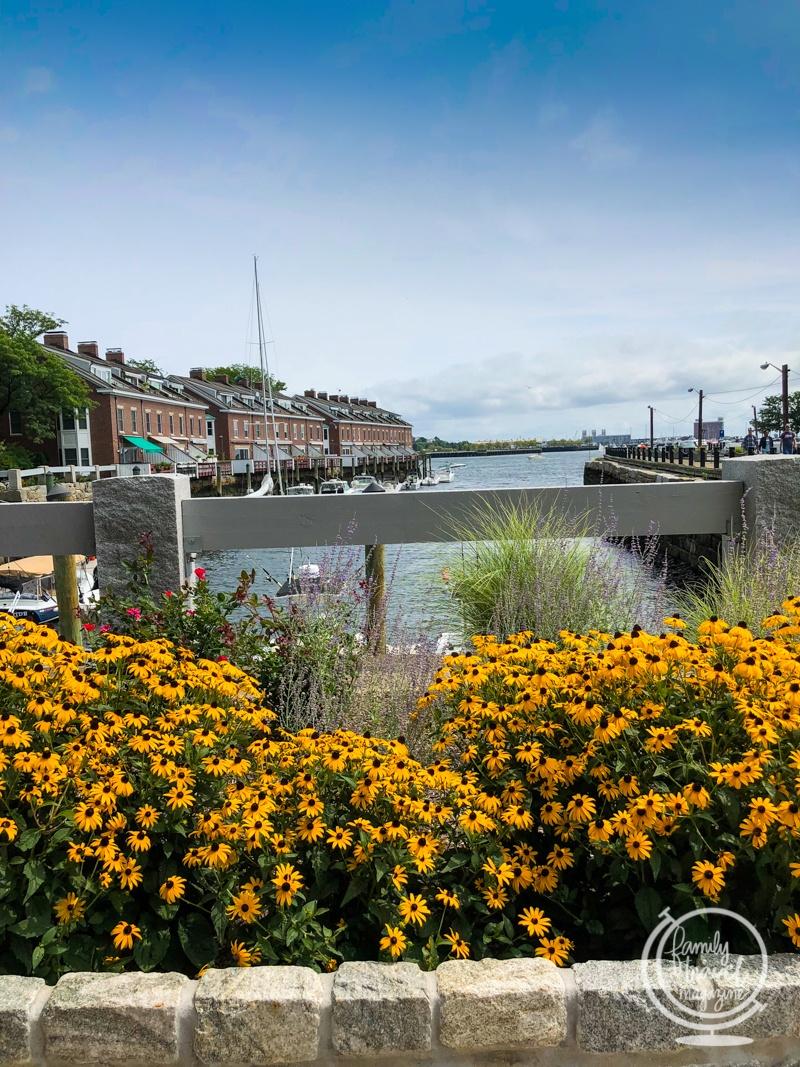 Boston Harbor with flowers