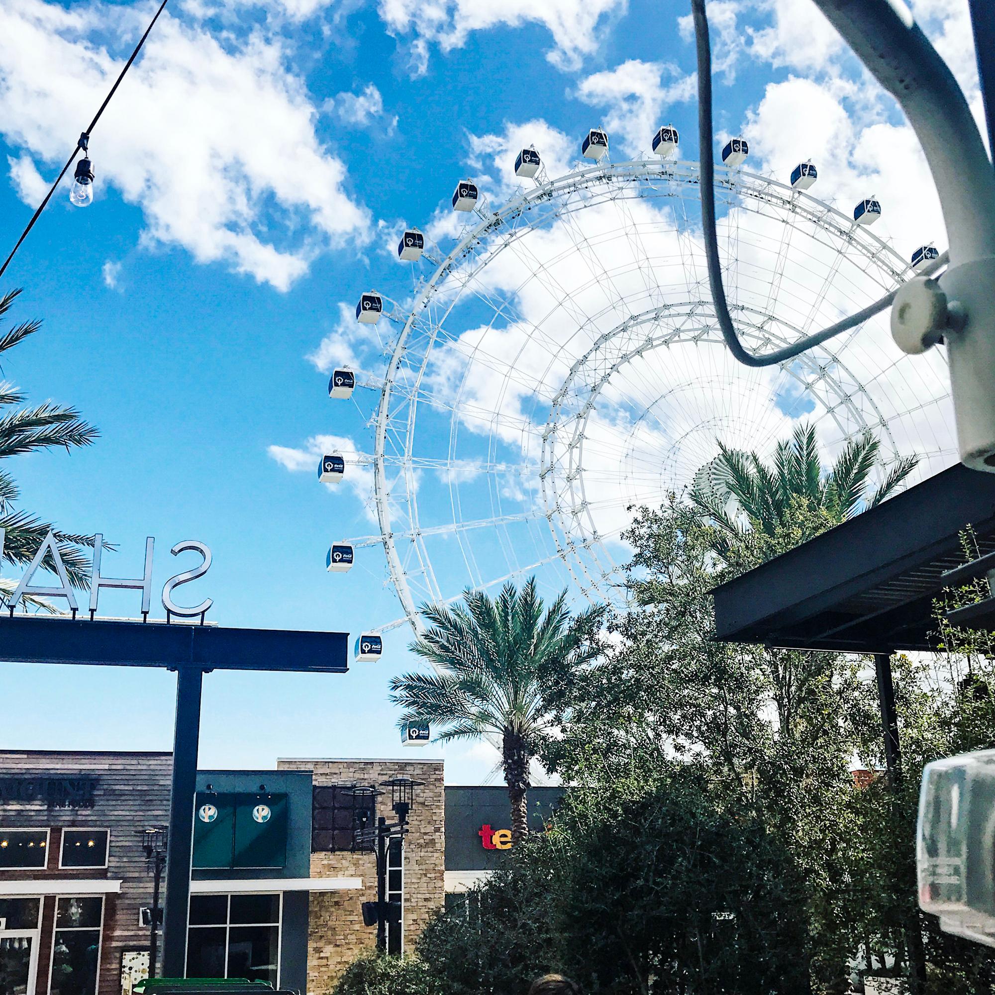 The Orlando ICON wheel