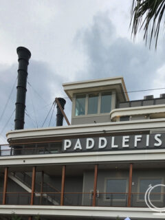 Paddlefish in Disney Springs